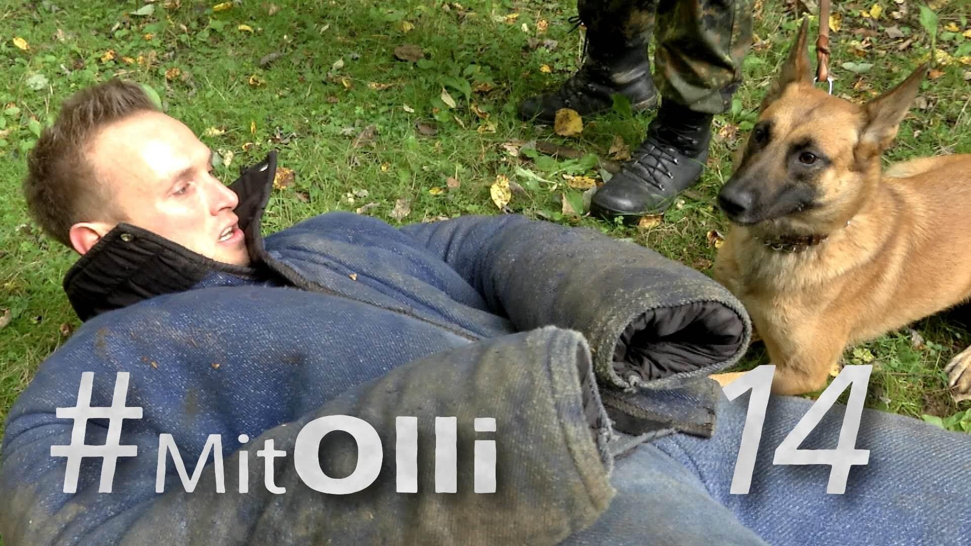 Mit Olli vom Schäferhund angefallen werden: Ein Einblick in die Diensthundeschule