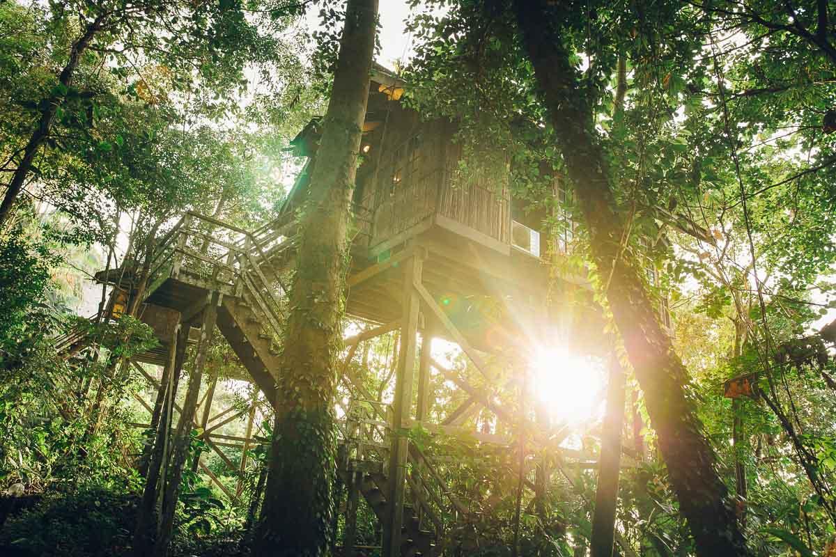 Reisebericht Kuching / Borneo: Irgendwo im Dschungel