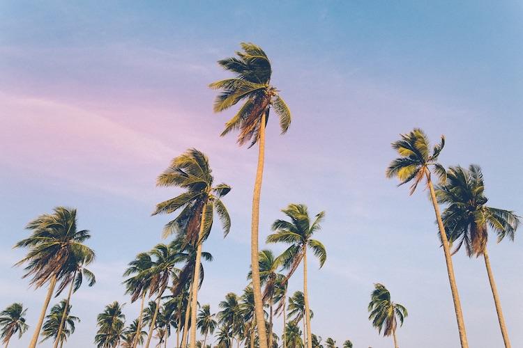 """[Anzeige] Inspirierender Reiseblog """"Travellers Insight"""""""