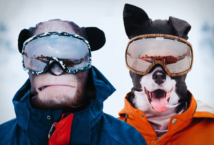 Tierisch gute Skimasken